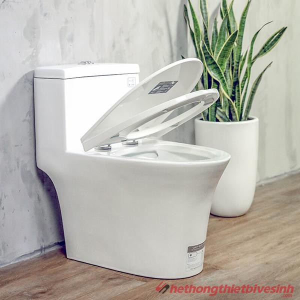 Thiết bị vệ sinh cao cấp nhập khẩu chính hãng từ Pháp-8